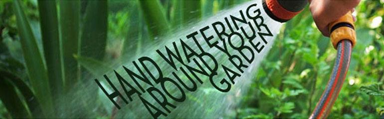 Hand Watering Around Your Garden