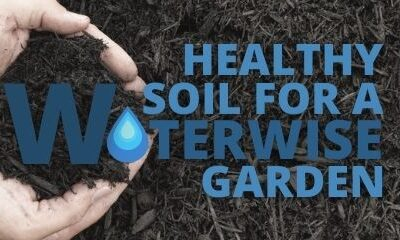 Healthy Soil for a Waterwise Garden