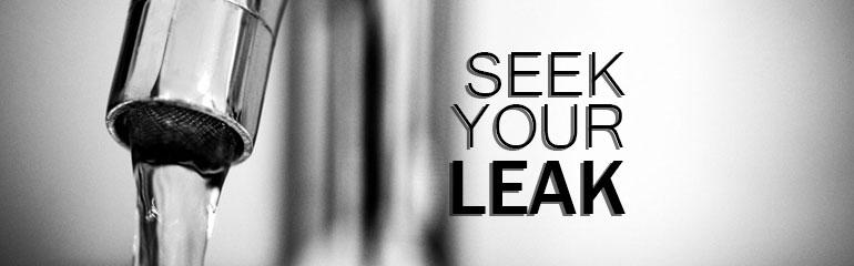 Seek Your Leak