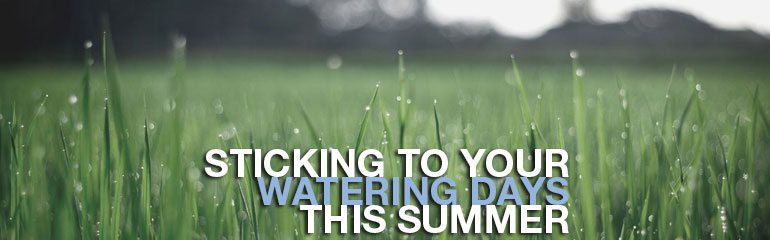 Sticking to your watering days this summer