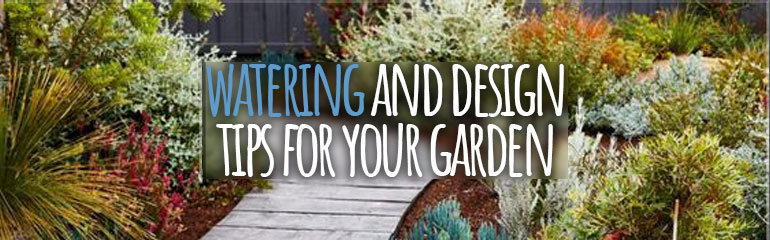 Watering and Design Tips for Your Garden
