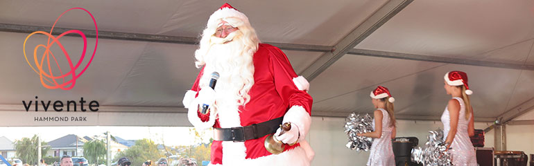 You're invited to the annual Hammond Park Christmas Party